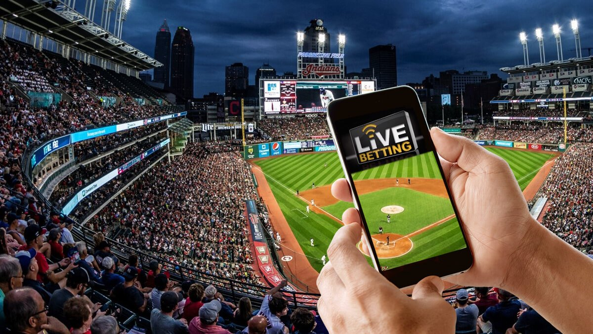 The Major Reasons for Considering Live IPL Betting Rates